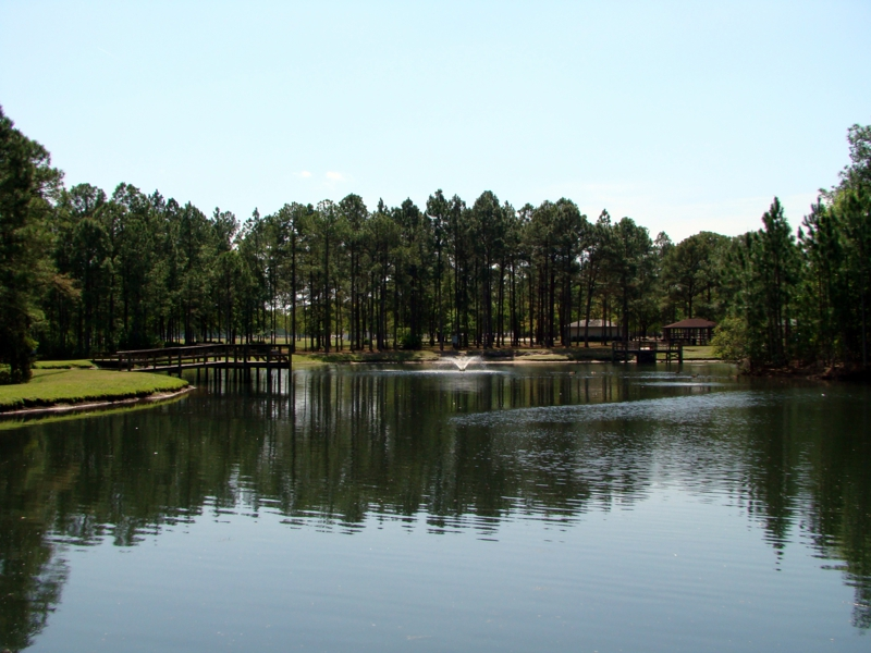 Pond at Ronnie Van Zant Park in Lake Asbury, Green Cove Springs Florida