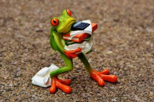 Cute frog trying to juggle everything without dropping anything